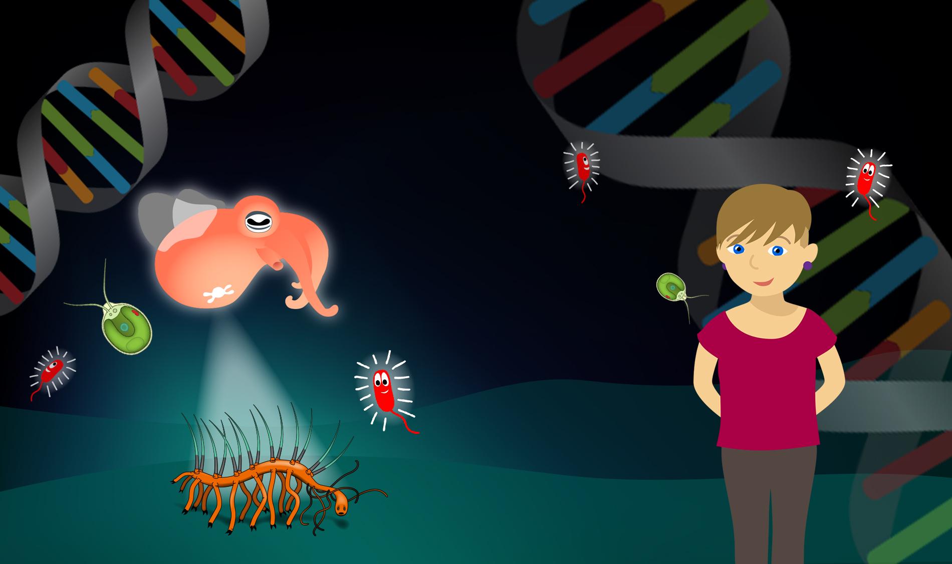 Bannergrafik Biologie 2