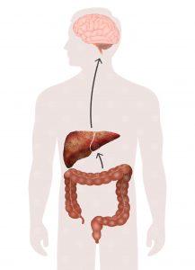 Ursache der hepatischen Enzephalopathie